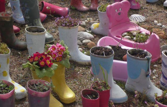 S1100051 welly garden