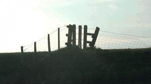 dutch fence