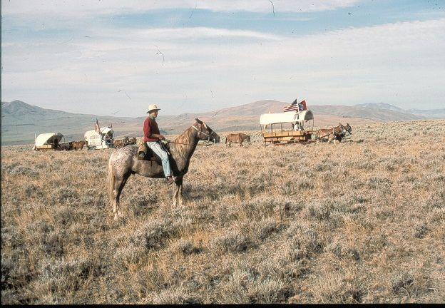 dw wagon train