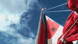 sails 5